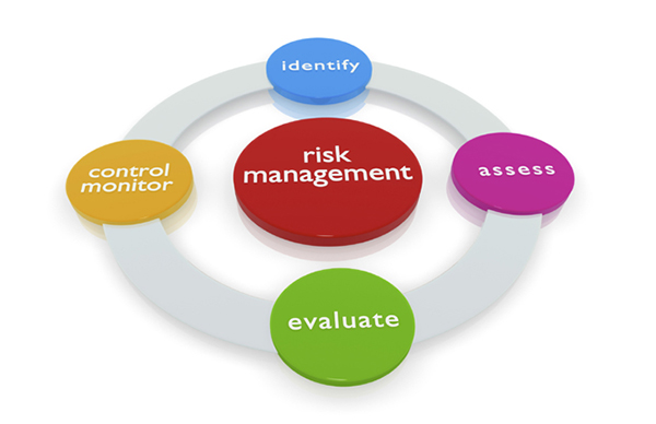 Risk Management Cycle
